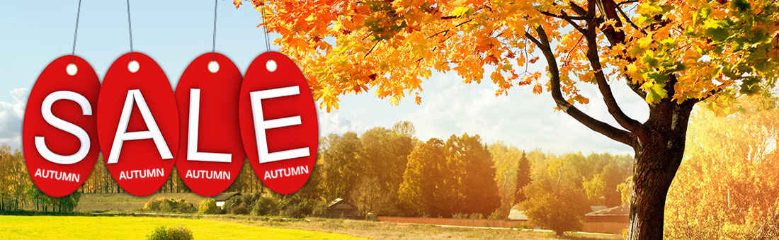 Autumn sale now on